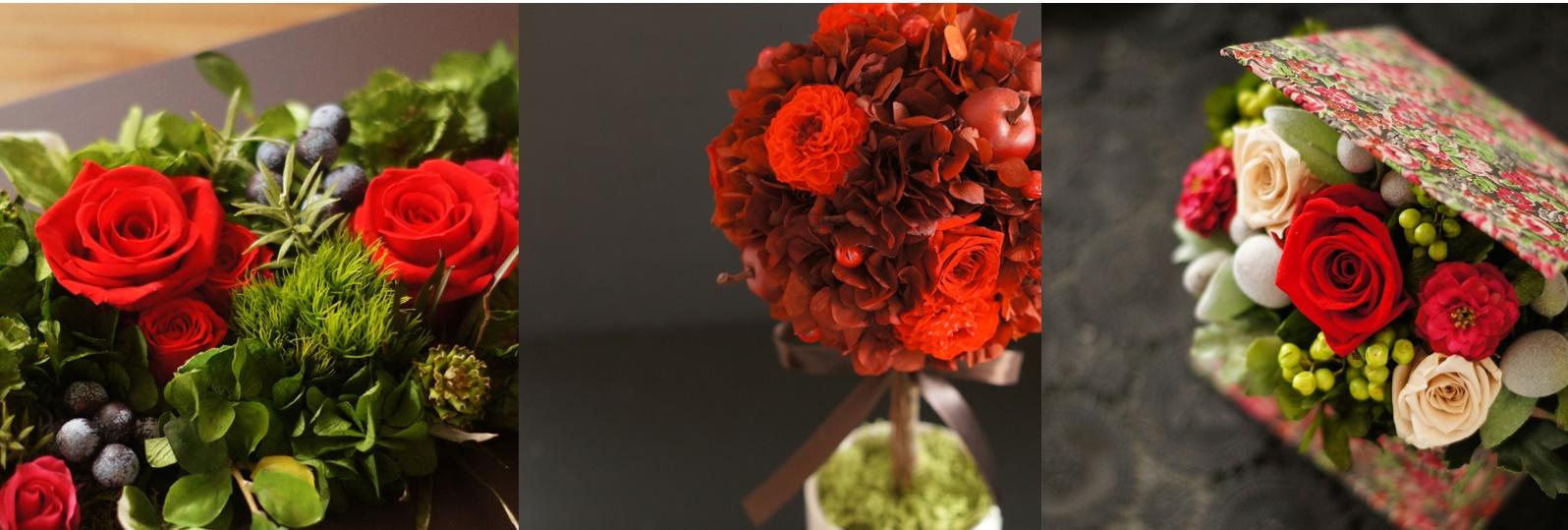 flowerstudio-licue